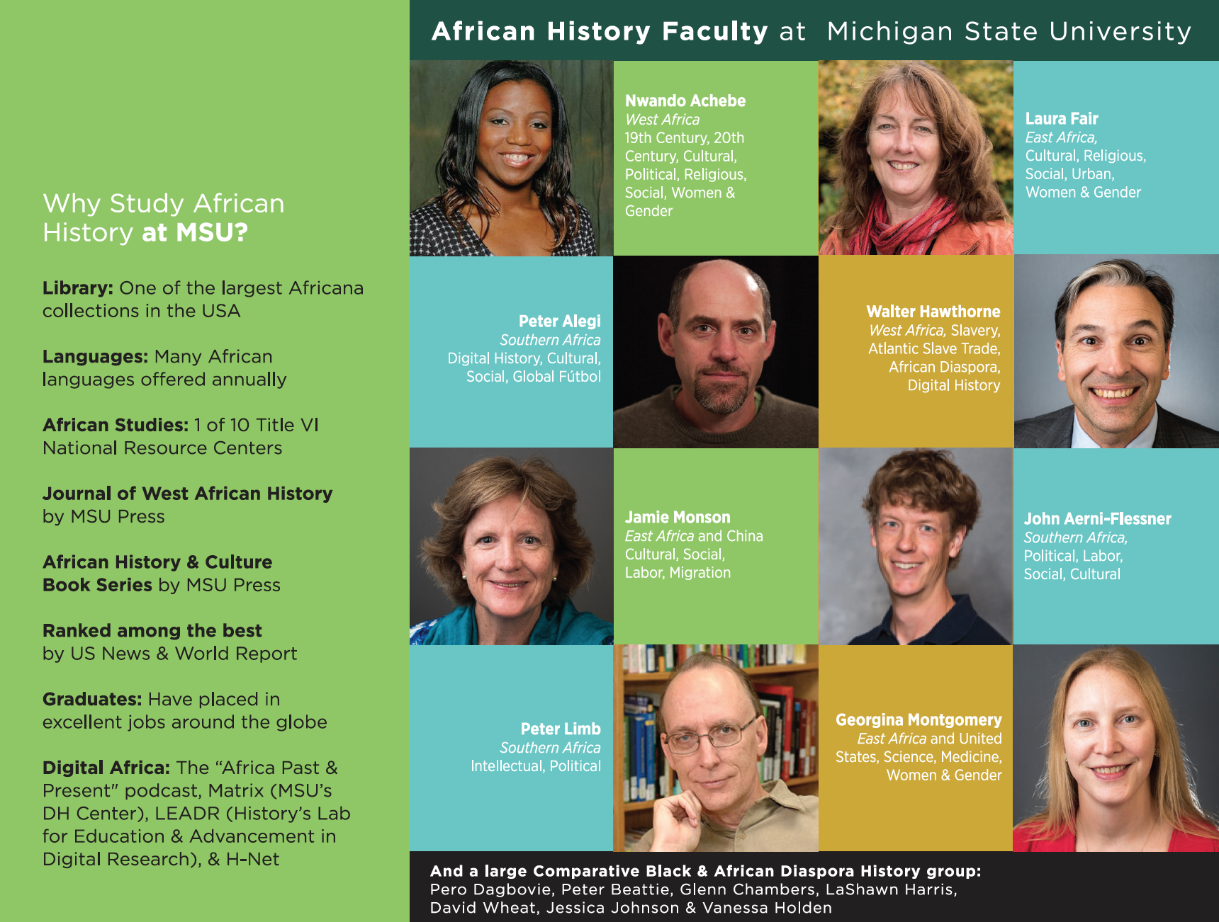 African History MSU